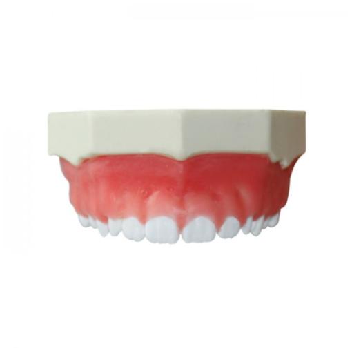 4052 - Maxilar Para Gengivectomia