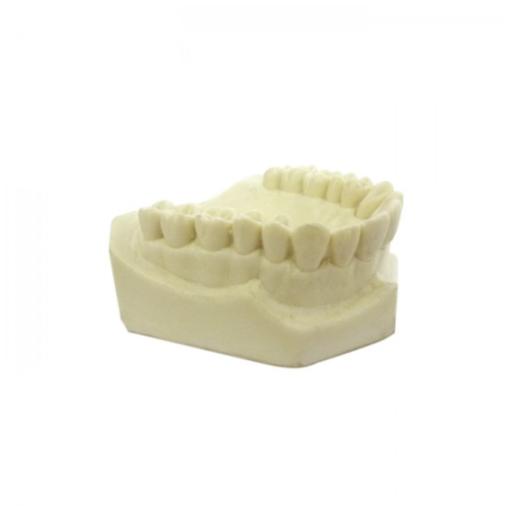 4800 – Maxila Com Todos Os Dentes