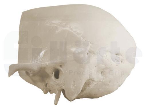 9010 - Crânio Auricular com Bloco de Apoio