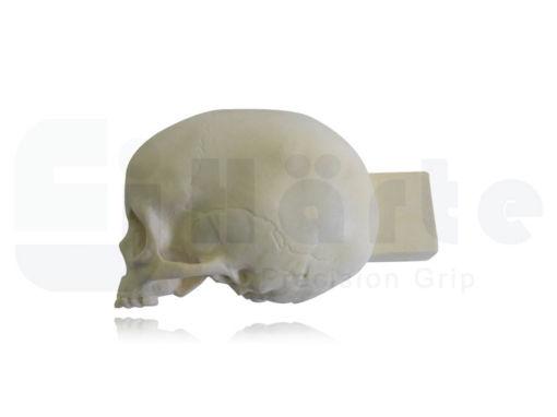 9015 -3 - Crânio Infantil Oco Longitudinal Esquerdo e Bloco de Apoio